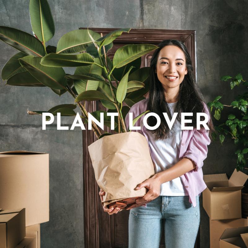 lightroom presets plant lover